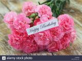 Carnation Birthday Flowers Happy Birthday Card with Pink Carnation Flowers Stock