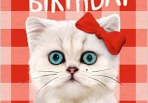 Cat Birthday E Card Wishes Greetings Pictures Wish Guy