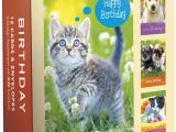 Cheap Boxed Birthday Cards wholesale Religious Boxed Cards with Scripture Birthday