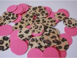 Cheetah Birthday Party Decorations Leopard Cheetah Hot Pink Confetti Perfect for Your Party