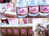 Cheetah Birthday Party Decorations Leopard Princess Party Style with Nancy