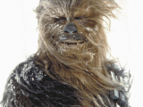 Chewbacca Birthday Meme May the Fourth Be with You E Cards to Share