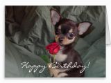 Chihuahua Birthday Cards Happy Birthday Wishes with Dog Page 10