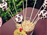 Cow Birthday Decorations Barnyard Farm Birthday Party Ideas Photo 5 Of 13 Catch