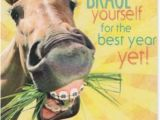 Cowgirl Birthday Card Sayings 17 Best Images About Happy Birthday On Pinterest