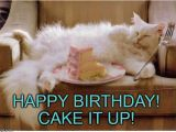 Crazy Lady Birthday Meme 20 Cat Birthday Memes that are Way too Adorable