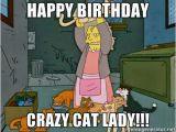 Crazy Lady Birthday Meme Best Happy Birthday Cat Meme
