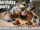 Crazy Lady Birthday Meme This is something My Best Friend Would Love Suzy Rose
