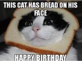 Crazy Lady Birthday Meme top 100 Happy Birthday Meme Happy Birthday Memes