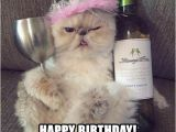 Cute Cat Birthday Meme 20 Cat Birthday Memes that are Way too Adorable