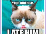 Cute Cat Birthday Meme Happy Birthday Memes with Funny Cats Dogs and Cute