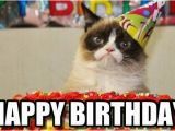Cute Cat Birthday Meme Incredible Happy Birthday Memes for You top Collections