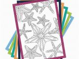 Does Barnes and Noble Have Birthday Cards Coloring Creations Greeting Cards Serenity with