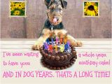 Dog Birthday Card Sayings Birthday Quotes for Dog Lovers Quotesgram