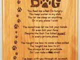 Dog Birthday Card Sayings Happy Birthday Quotes for Dogs Happy Birthday From the