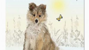 Doggie Birthday Cards Down the Lane Collection wholesale Greeting Cards and