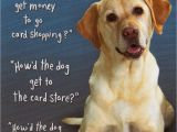 Doggie Birthday Cards Quotes About Dogs Birthday 22 Quotes