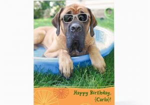 Doggie Birthday Cards The Gallery For Gt Card Dogs