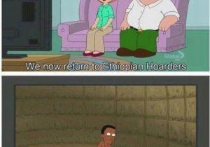 Family Guy Birthday Meme 77 Best Images About Family Guy Memes On Pinterest