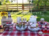 Farm Animal Birthday Party Decorations Barnyard Party Ideas Eli S Farm Birthday Party