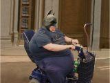 Fat Woman Birthday Meme 20 Funny Fat Girl Memes Sayingimages Com