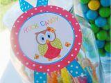 First Birthday Owl Decorations Kara 39 S Party Ideas Aloha Owl 1st Birthday Party Via Kara