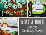 First Birthday Owl Decorations Owl 1st Birthday Party Mostly Homemade Mom