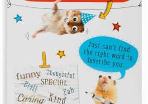 Free Birthday Cards For Son In Law Birthday Card Son In Law Raise A