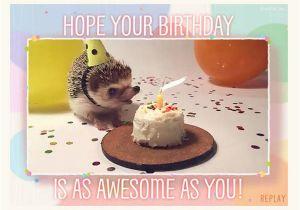 Free Funny Interactive Birthday Cards 9 Animated Editable Psd Ai Vector