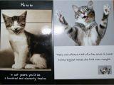 Free Printable Cat Birthday Cards Cute Cat Birthday Quotes Quotesgram