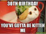 Funny 30th Birthday Memes 30th Birthday You 39 Ve Gotta Be Kitteh Me Make A Meme