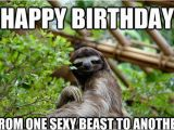 Funny Adult Birthday Memes 20 Birthday Memes for Your Best Friend Sayingimages Com