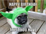 Funny Animal Birthday Memes Incredible Happy Birthday Memes for You top Collections