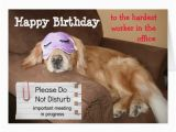 Funny Birthday Card Messages for Coworker Quotes Funny Birthday Ecard From Office Quotesgram