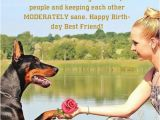 Funny Birthday Cards for Your Best Friend Happy Birthday Funny Images Pictures Happy Birthday