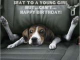 Funny Birthday Cards with Animals 42 Best Funny Birthday Pictures Images My Happy