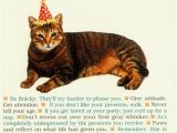 Funny Birthday Cards with Cats All I Need From Cat Funny Humorous Birthday Card by