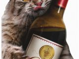 Funny Birthday Cards with Cats Cat Wine Bottle Avanti Oversized Funny Birthday Card by