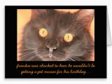 Funny Birthday Cards with Cats Funny Shocked Cat Birthday Card Wishes Zazzle Images Of