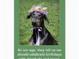 Funny Birthday Cards with Dogs Funny Dog Birthday Card Zazzle
