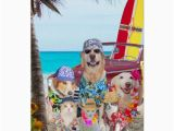 Funny Birthday Cards with Dogs Funny Dogs Cats Hawaiian Surfer Birthday Card Zazzle Com