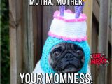 Funny Birthday Memes for Mom 20 Memorable Happy Birthday Mom Memes Sayingimages Com