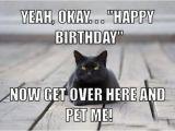 Funny Black Happy Birthday Meme 13 Best Best Funny Memes 2018 Images On Pinterest Funny