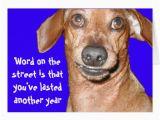 Funny Dachshund Birthday Cards Dachshund Birthday Card Zazzle