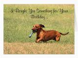 Funny Dachshund Birthday Cards English Pointer Cards Invitations Zazzle Co Uk
