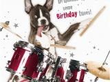Funny Drummer Birthday Cards 988 Best My Picture Creations Images On Pinterest
