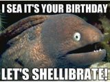 Funny Fishing Birthday Memes Funny Fish Happy Birthday Images Good Morning Images