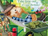 Funny Gardening Birthday Cards Garden Hammock Funny Birthday Card afternoon Snooze Guinea