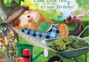 Funny Gardening Birthday Cards Garden Hammock Funny Birthday Card afternoon Snooze Guinea