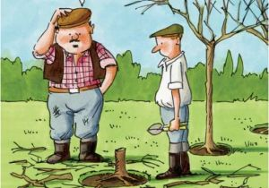 Funny Gardening Birthday Cards Gardeners Weakly